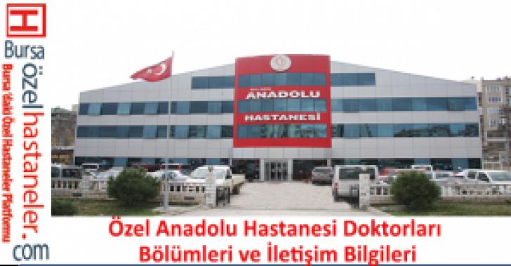 Özel Anadolu Hastanesi Doktorları Bölümleri ve İletişim Bilgileri